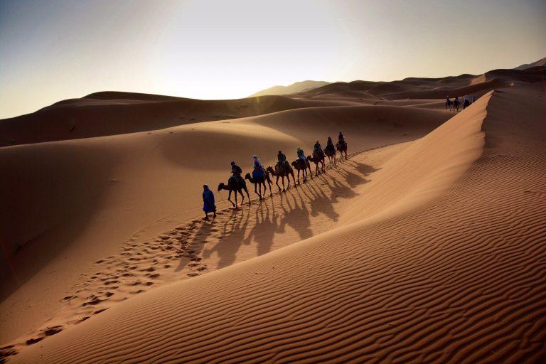 Sahara / Wheels In Motion